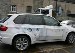 Кошка. Рисунок на автомобиле. Фото